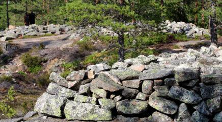 Kivikasoja metsässä ja kalliolla
